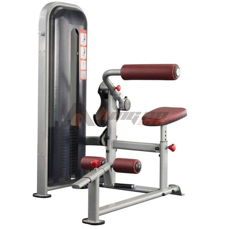 D2-010 Abdominal and Back Training machine